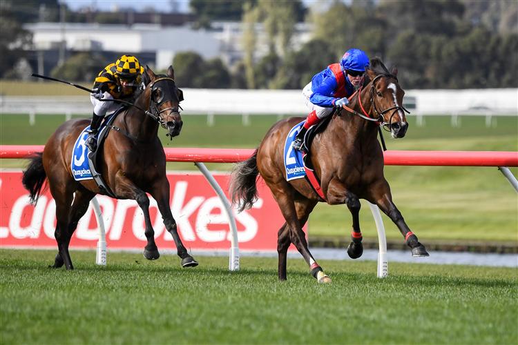 ZAAKI winning the Underwood Stakes at Sandown in Australia.