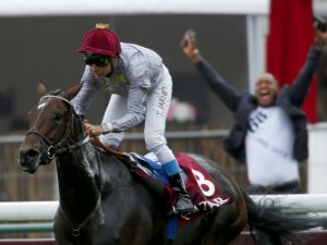 Treve Delivers First Foal