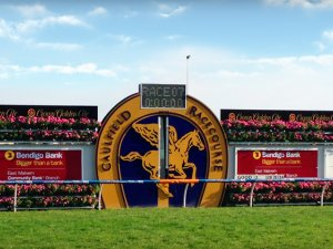Caulfield and Doomben Preview with Chris Scholtz