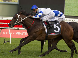 Kermadec winning the Colgate George Main Stakes