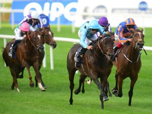 Almanzor & Brametot Fail At Deauville