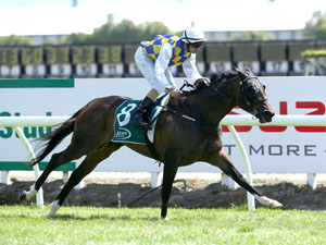 Fanatic Nearing A Trial Ahead Of Cups