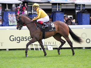 Strong US Challenge For Royal Ascot