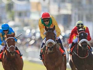 Winks Aims Higher In Mauritius