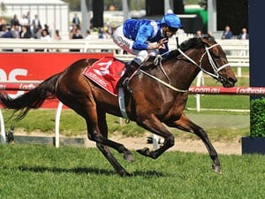 Tuesday Trial For Champion Winx