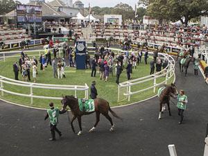 ATC Promotes Racehorse Ownership