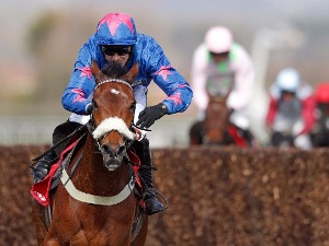 Tizzard Waits With Cue Card