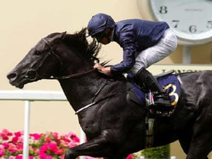 France Could Be Next For Caravaggio