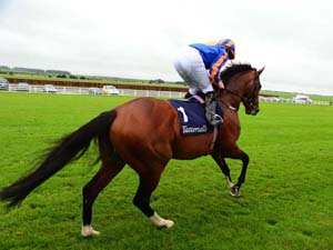 O'Brien Plans In Place For York