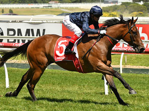 Hayes Favours Fillies In Blue Diamond