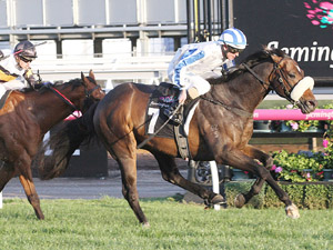 Hardham First Cup Runner For Brideoake
