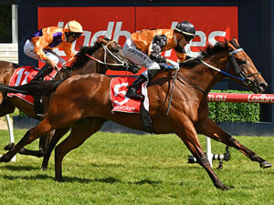 Group One Aspirations For Legless Veuve