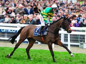 Minella Rocco May Return At Doncaster