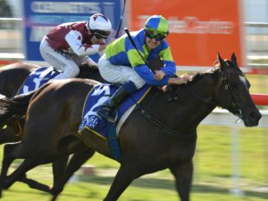 Oakleigh Plate Start For Ocean Embers