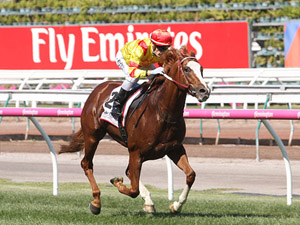 Palentino winning the Incognitus Blamey Stakes