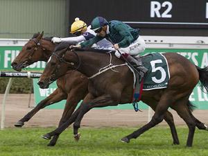 Satin Slipper winning the Keeneland Gimcrack Stakes