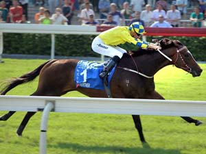 Another Group 1 Win For Werther