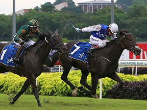 Singapore Gold Cup For Elite Invincible
