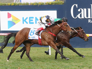 Daily Tips And Computer Card - July 14
