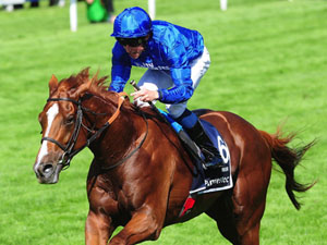 Derby Winner Masar Out For Season