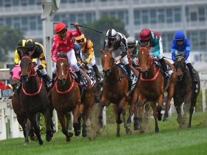 Mr Stunning wins the LONGINES Hong Kong Sprint