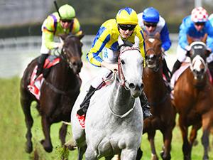 Today's Horse Racing Tips – December 8