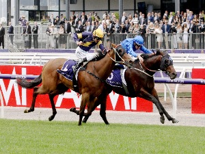 RANIER winning the The Carbine Club Stakes