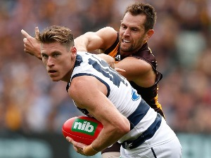 MARK BLICAVS of the Cats and LUKE HODGE of the Hawks compete for the ball during the 2016 AFL match between the Geelong Cats and the Hawthorn Hawks at the Melbourne Cricket Ground, Melbourne.