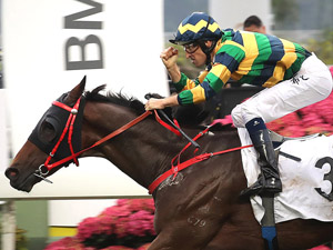 Another Hong Kong Derby Win For NZ