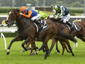 Nettoyer winning the Teed Up Tours Aspiration Qlty