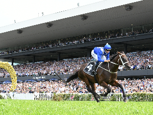 32 For Peerless Winx
