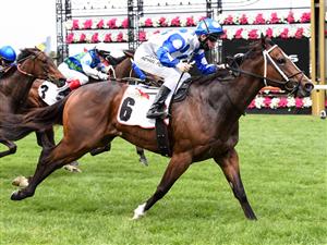 「贵族出身」夺冠世纪锦标赛(Century Stakes)