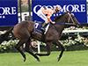 Black Caviar's record to be broken?
