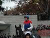 Jockey : Yutaka Take (Japan Cup)