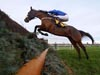 Cue Card winning the Betfair Chase (Grade 1) (Registered As The Lancashire Chase)