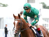 Decorated Knight