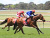 Husson Eagle winning the Doveton Stakes