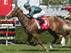 Khan winning the Newgate Breeders' Plate