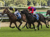 Sense Of Occasion (left) beats Dibayani in the Villiers