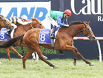 Bonneval rates to win Caulfield Cup