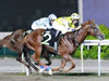 Bristol Diamond winning the MAIDEN
