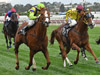 Crystal Dreamer can win at Sandown