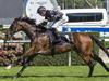 Ecuador wins the Carrington Stakes