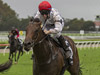 Frolic winning the Reisling Stakes