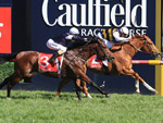 Gailo Chop winning the Ladbrokes Caulfield Stakes