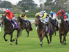 Haussmann (yellow sleeves) downs So Far Sokool (red jacket) winning the Great Northern Foal Stakes