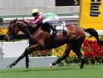 Horse Of Fortune winning the THE PREMIER PLATE (HANDICAP)
