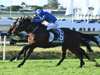 Impending winning the Stradbroke