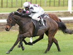 Kamikaze Rebel winning the Xmas At The Races Book Now Mdn