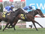 Eshtiraak can go one better at Caulfield